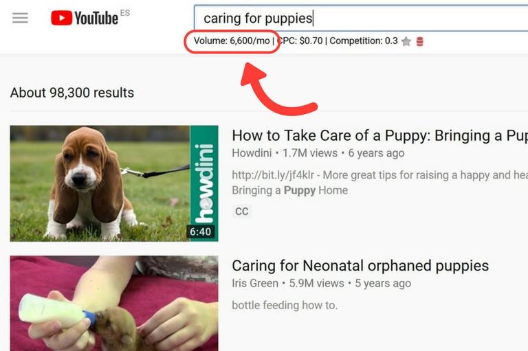 YouTube SEO Keywords Everwhere